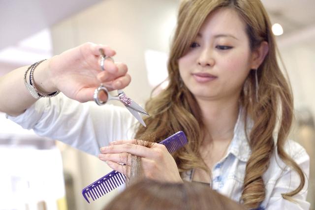 公共職業訓練で美容師の国家資格が取れる